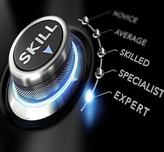 مهارت و تجربه کارآمد